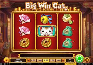 Big Win Cat darmowa gra